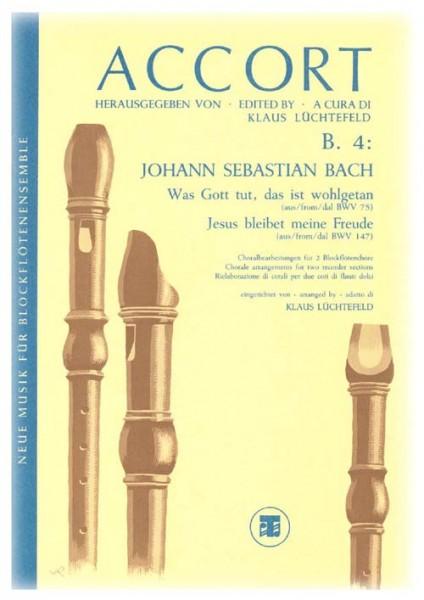 Zwei Choralbearbeitungen